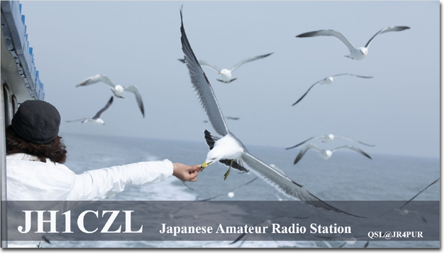 QSL@JR4PUR #386 - The Lunchtime