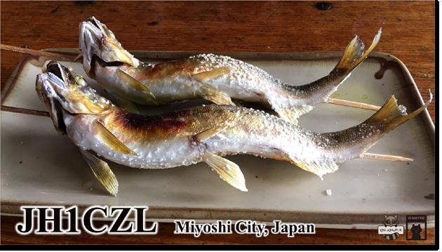 QSL@JR4PUR #491 - Ayu (Sweetfish)