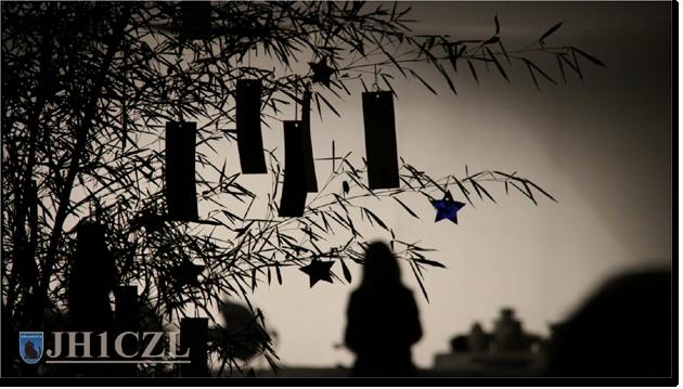 QSL@JR4PUR #513 - Tanabata