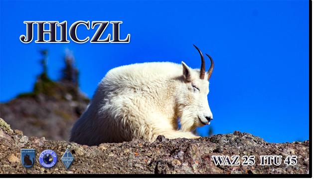 QSL@JR4PUR #651 - Goat